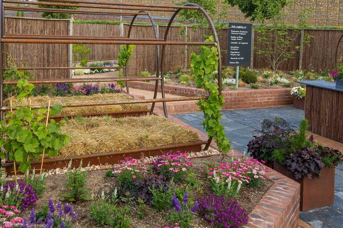 Gärten binger gärten bingen am rhein